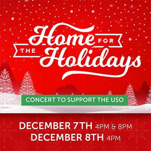 More Info for Home For The Holidays